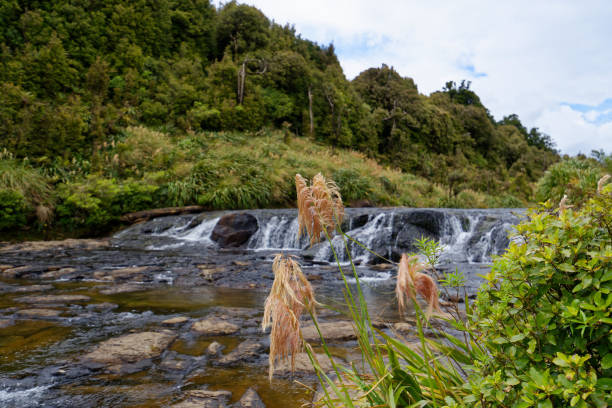 Top of the Wairere Falls, Waikato stock photo