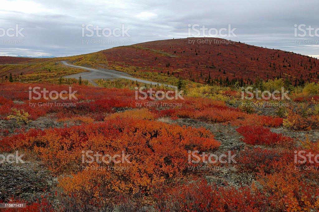 Top of the World Highway,Yukon Territory,Canada stock photo