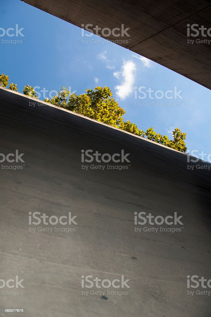 Top of trees appearing on top of a concrete wall royalty-free stock photo