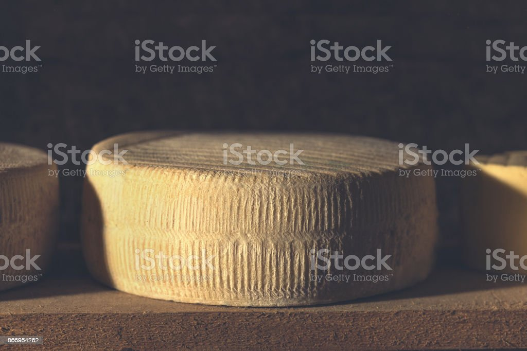 top quality cow cheese resting in cellar round shape stock photo