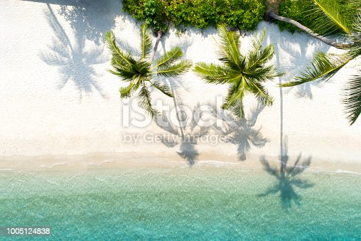 Top view aerial drone shot of beautiful white sand beach with green coconut trees and crystal clear sea water in summer