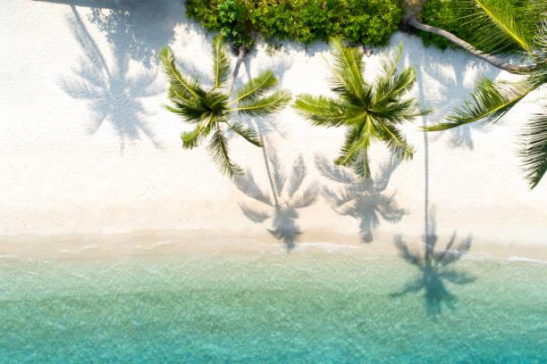 vista superior abejón aéreo tiro de hermosa playa - beach in thailand fotografías e imágenes de stock