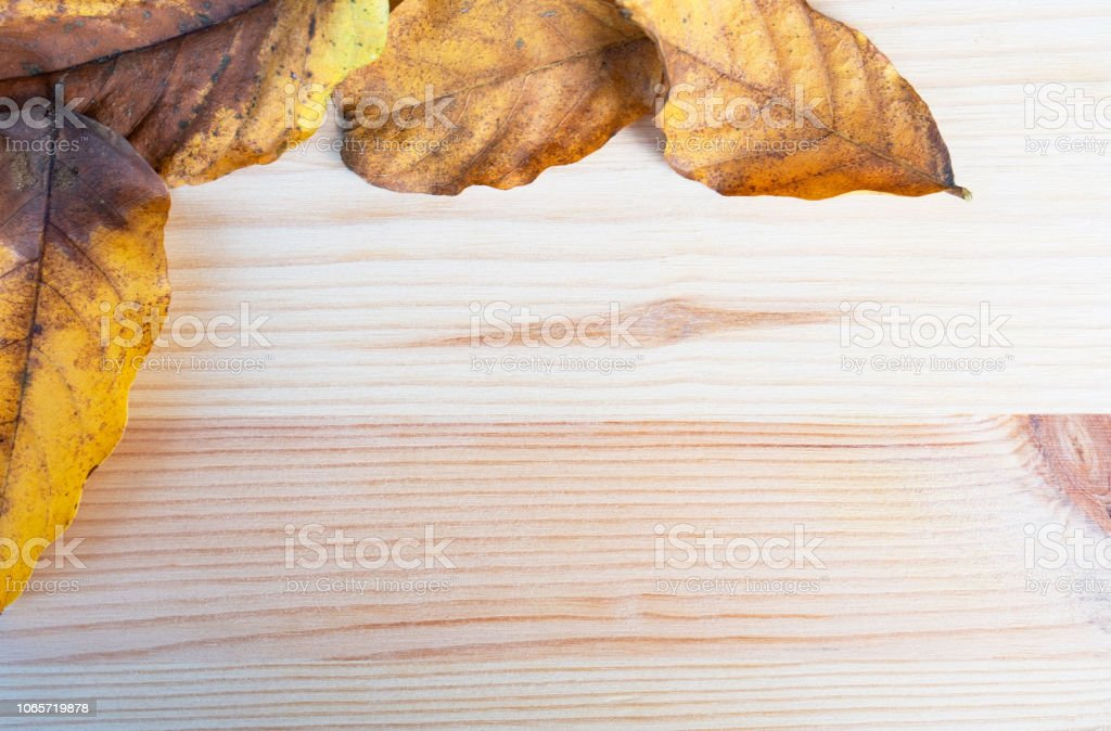 top view Autumn leaf, leaves yellow on wooden table ,wooden board for...