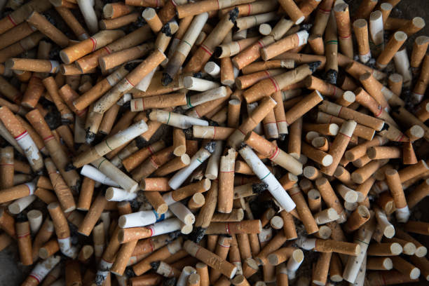 Top view Close up of Tobacco Cigarettes Background or texture Cigarette butts and Smoking is bad for your health concept Top view Close up of Tobacco Cigarettes Background or texture Cigarette butts and Smoking is bad for your health concept nicotine stock pictures, royalty-free photos & images
