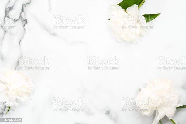 Top view frame of white peony flowers on marble background minimal picture id1159370006?b=1&k=6&m=1159370006&s=612x612&h=057ayzbukisc53jiocy jpzpbdijinjnxcgl9fnxn6s=