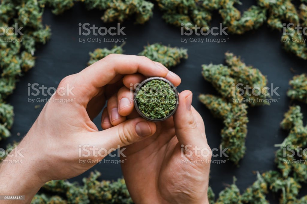 Top view grinder in hand man A lot of marijuana Grinder in hand, fresh buds of cannabis many weed. Copy spase Copy-space - Royalty-free Addiction Stock Photo