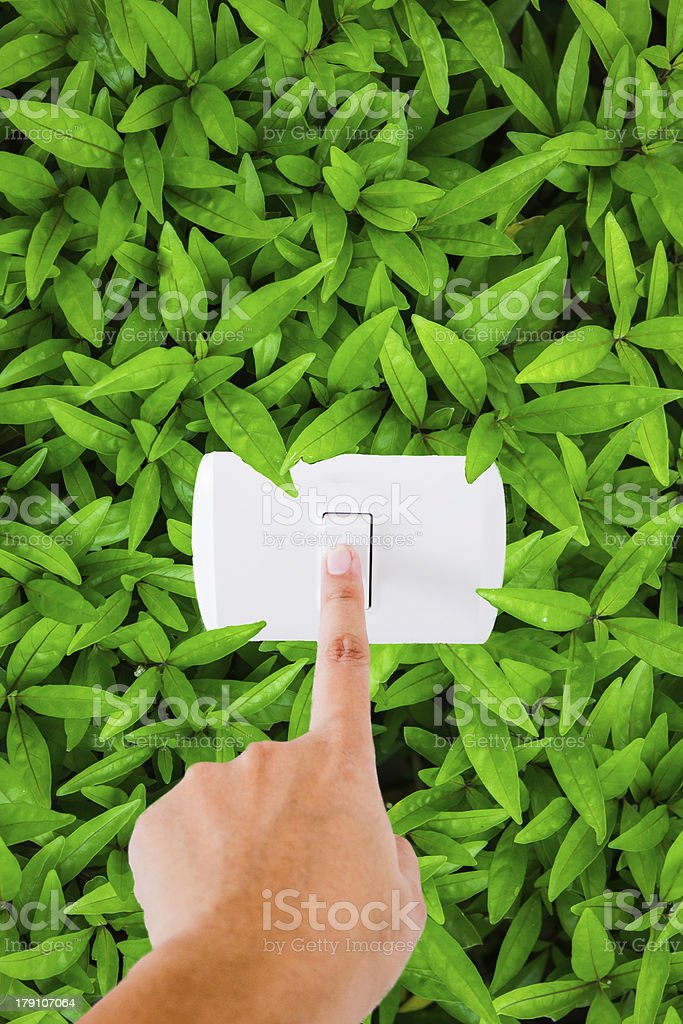 top view leaf background stock photo