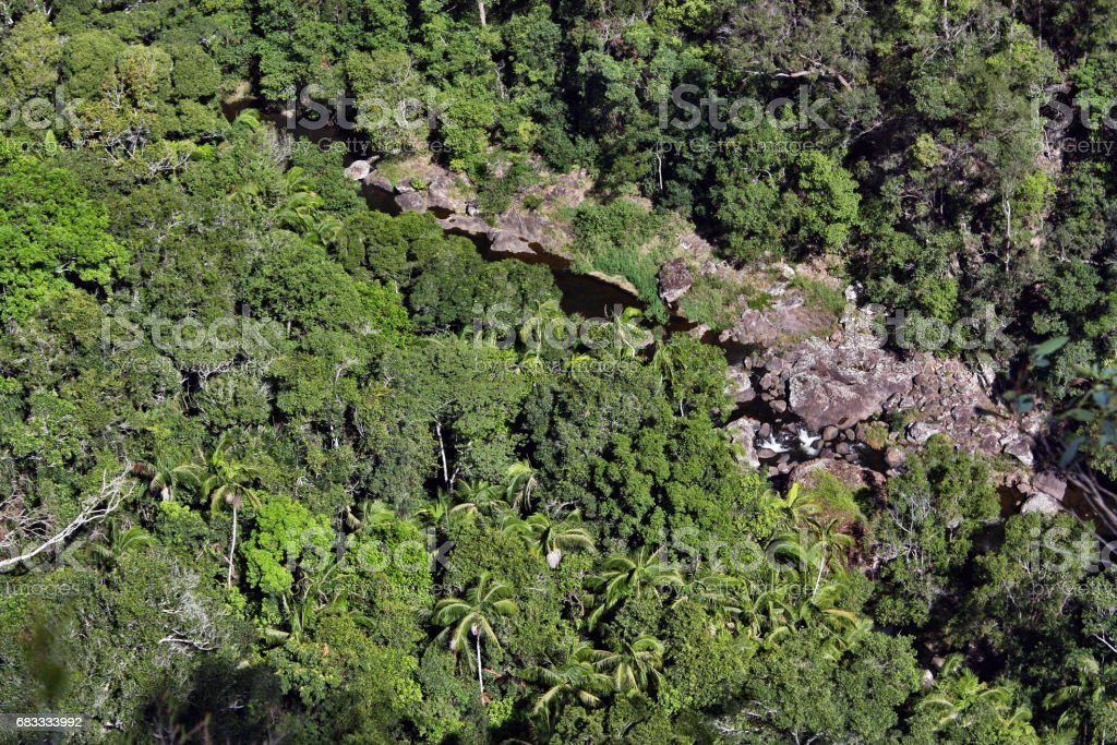 Top view of a mountain river in the bush in Kondalilla National Park royalty-free stock photo