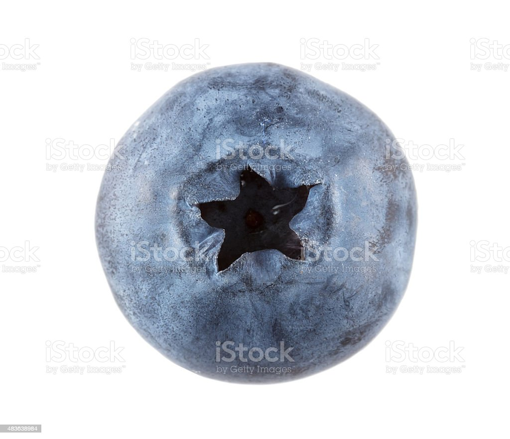Top view of a single blueberry against a white background stock photo