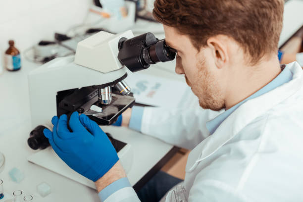 Top view of a smart professional biologist Biological project. Top view of a smart professional biologist working on scientific project microbiologist stock pictures, royalty-free photos & images
