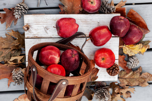 Top view of Autumn setup with fresh red apples and natural leaves, festive background stock photo