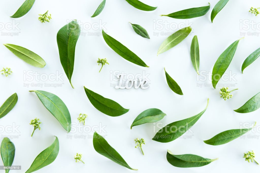 Top view of beautiful fresh green leaves and love symbol isolated on white, wedding invitation floral concept stock photo