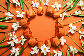 istock Top view of beautiful orange tulips and white daffodils circle frame on orange background 1244910836