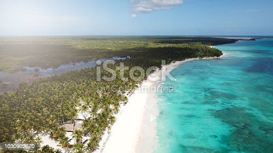 istock Top view of beautiful white sand beach with turquoise sea water and palm trees, aerial drone shot. Nature background 1030902670