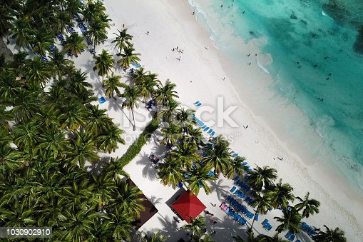 istock Top view of beautiful white sand beach with turquoise sea water and palm trees, aerial drone shot. Nature background 1030902910