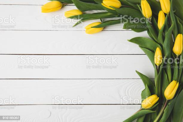 Top view of beautiful yellow tulips on white wooden surface picture id916185052?b=1&k=6&m=916185052&s=612x612&h=gbgmiiiprdrawkq8ehkdvcbpeo1lnbehefndl2sgbz0=