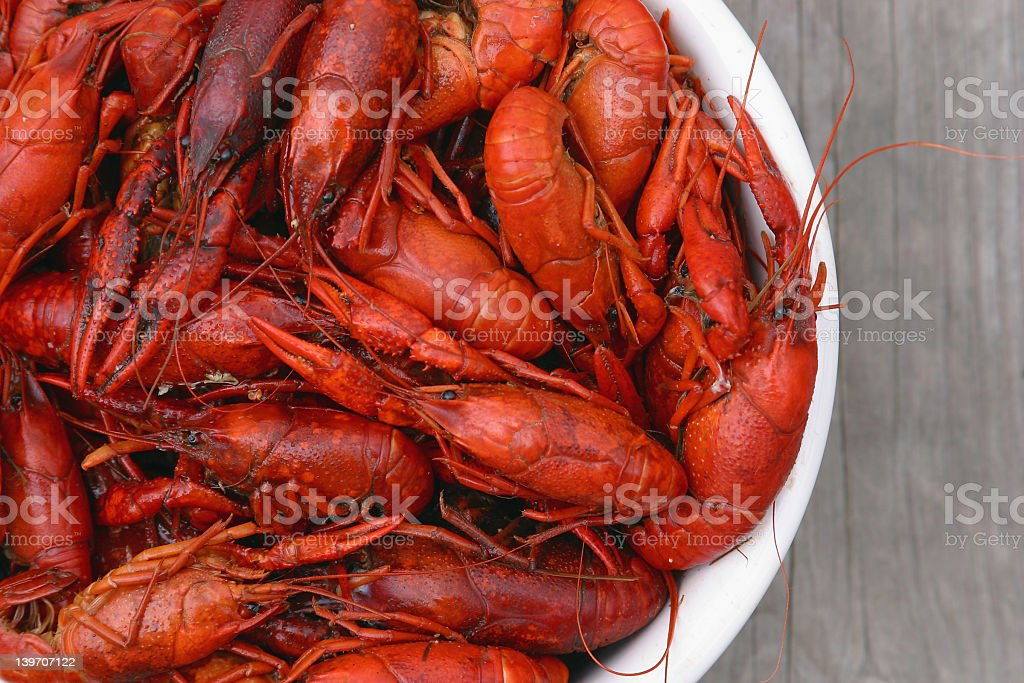 Top View of Boiled Crawfish in a White Bowl stock photo