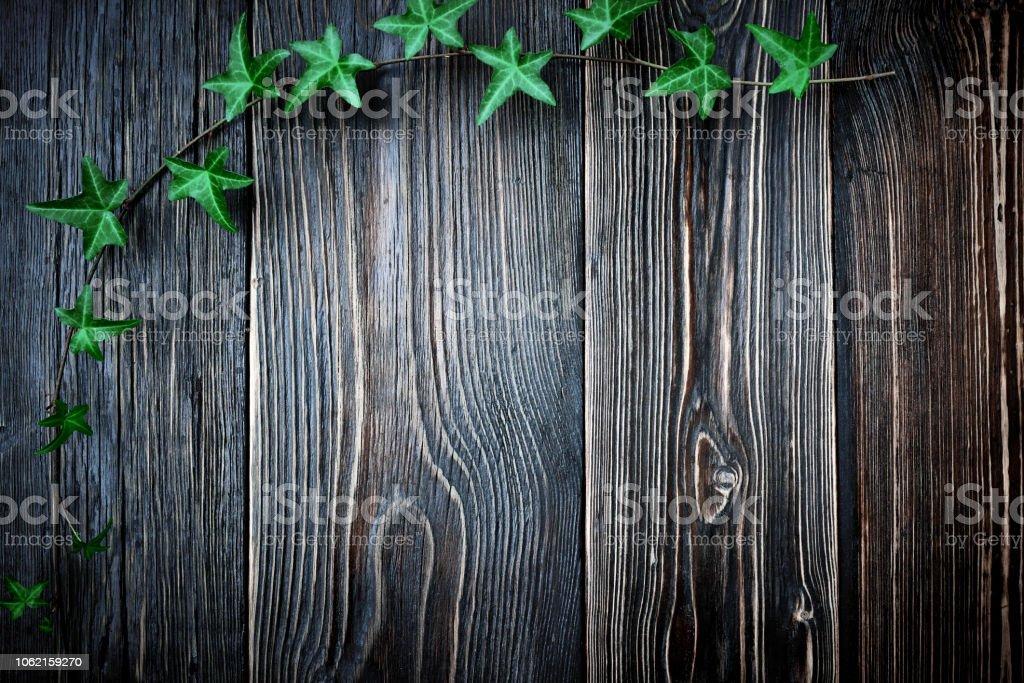 Draufsicht der Grenze von Efeu Blätter auf abstrakte Holz Hintergrund – Foto