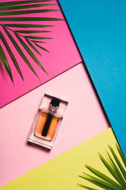 ovanifrån av flaska parfym på färgglada yta med palm lämnar - summer smell bildbanksfoton och bilder
