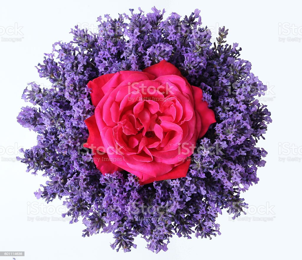 Top View Of Bouquet Of Lavender Flowers And Pink Roses Stock Photo ...