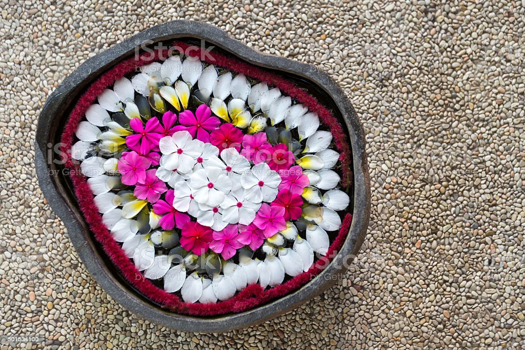 Top view of bowl with floating  tropical exotic colourful flowers stock photo