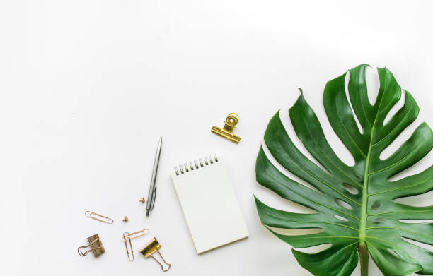 Top view of business desk table with monstera leaves and mock up accessories on white background.flat lay design. stock photo