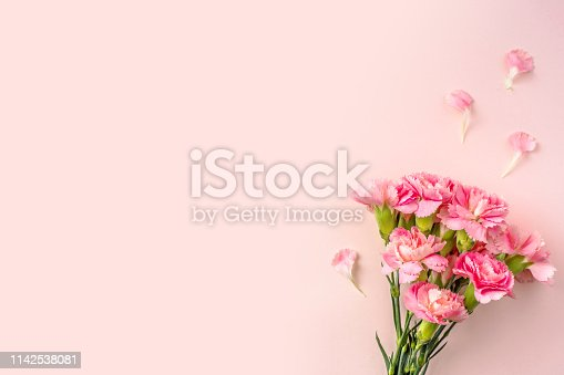 istock top view of carnation on pink for mother day 1142538081