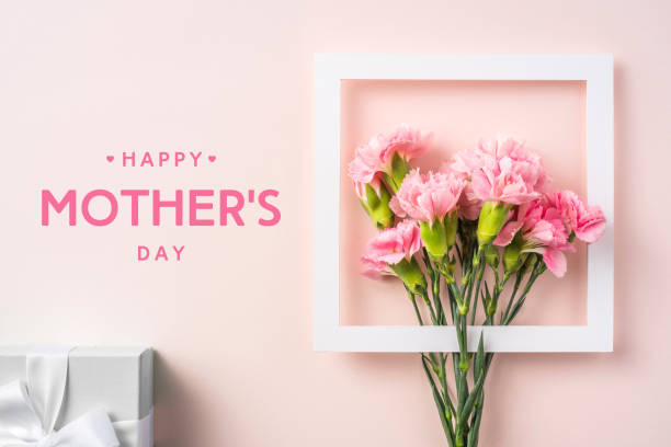 top view of carnation on pink for mothers day event design concept - top view of a bunch of pink carnation with white photo frame, gift box and greeting word on pink background for mothers day event with copy space for mock up flower part stock pictures, royalty-free photos & images