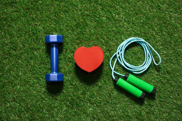 vue de dessus de haltère coloré avec le symbole du coeur et la corde à sauter sur l'herbe - imitant un animal photos et images de collection