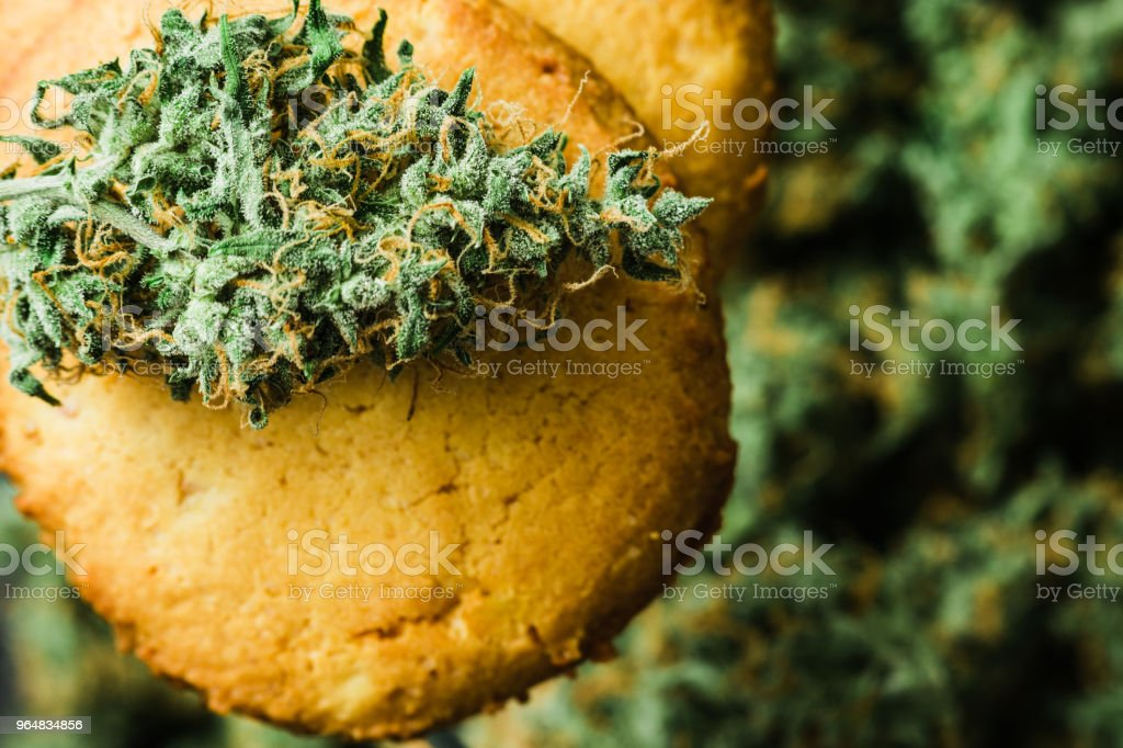 Top view of Cookies CBD Concept of cooking with cannabis with cannabis and buds of marijuana royalty-free stock photo