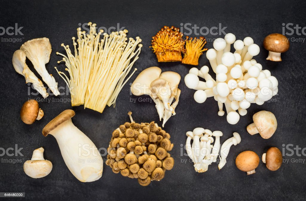 Top View of Different Mushrooms stock photo