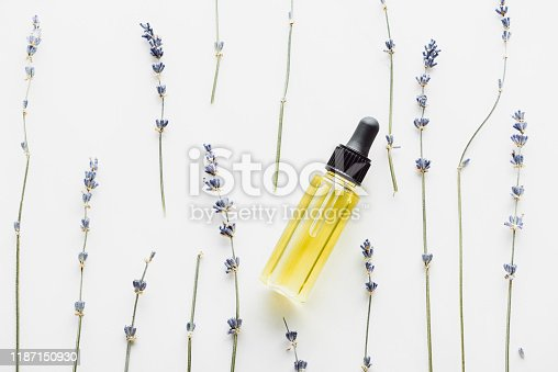 top view of dry lavender twigs with flowers and bottle with natural oil on white background