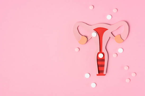 top view of female reproductive system and pills on pink stock photo