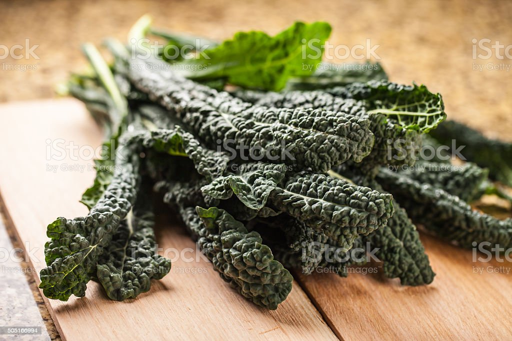 Top view of freshly harvested lacinato kale stock photo