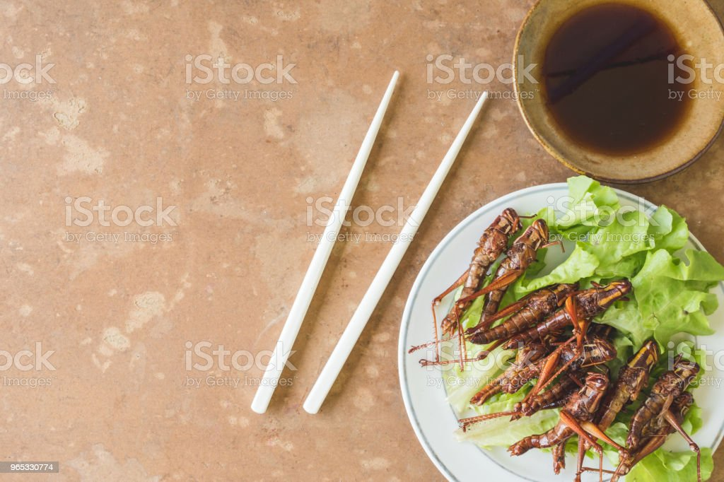 Top view of Fried insects in dish with sauce on wooden table. copy space royalty-free stock photo