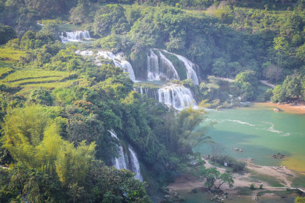 Top view of green forest waterfall stock photo