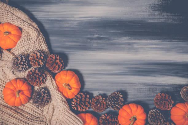 cadılar bayramı ve şükran günü en iyi görünümü. - thank you background stok fotoğraflar ve resimler