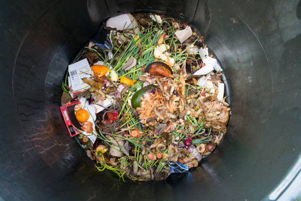 Top view of home composting bin with kitchen scraps and other organic matter stock photo