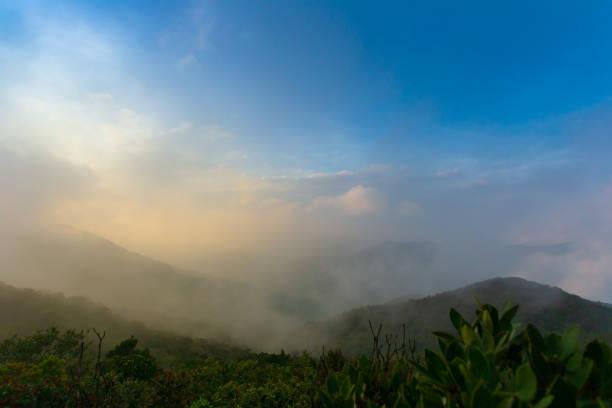 Top view of Khao Luang National Park, Nakhon Si Thammarat, Thailand stock photo
