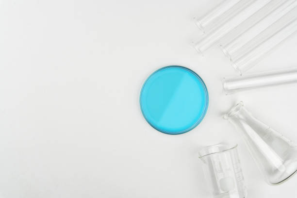 top view of laboratory equipments top view of laboratory equipments. A blue liquid Petri dish, flask, test tubes and beaker on the white table petri dish stock pictures, royalty-free photos & images