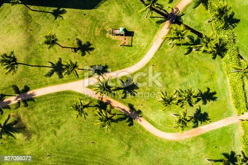 istock Top View of Path in a Beach 827066072