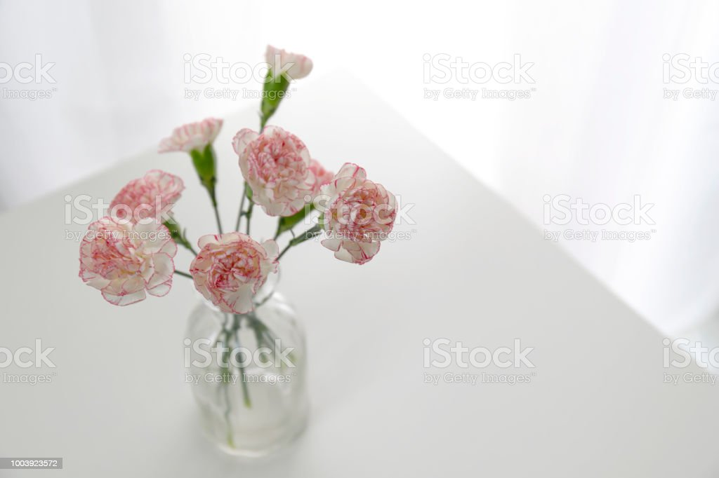 Top View Of Pink And White Carnation Flowers Vase On White Table In