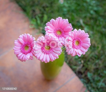 Top view of pink gerbera flowers bouquet in green vase.