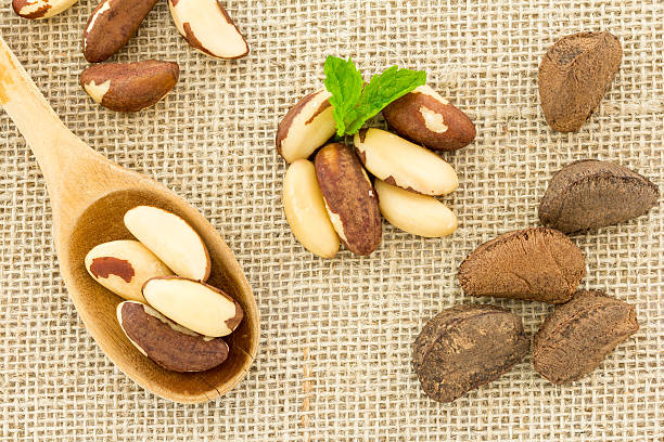 Top view of set of Brazil Nuts over burlap fabric stock photo