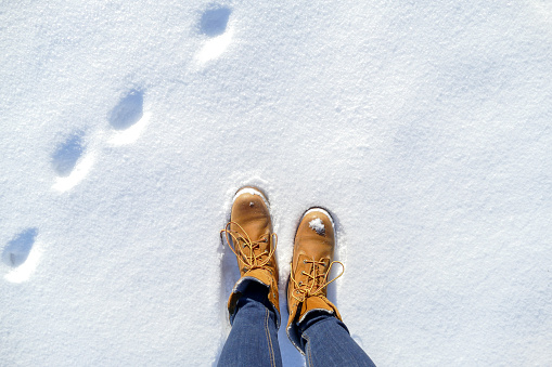 Top view of shoes and animal footprint in fresh snow.