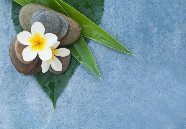 draufsicht der tropischen spa objekte und steinen für relax-massage-raum - steingut geschirr stock-fotos und bilder