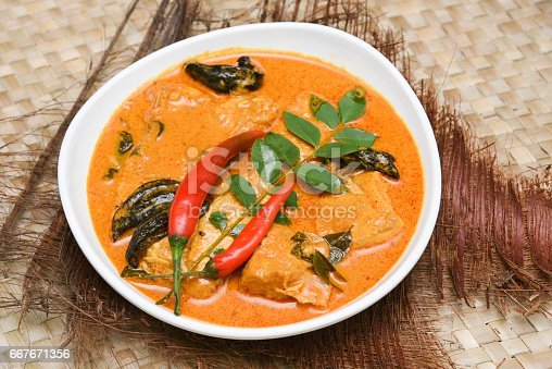 istock Top view of spicy and hot king fish curry Kerala Indian food 667671356
