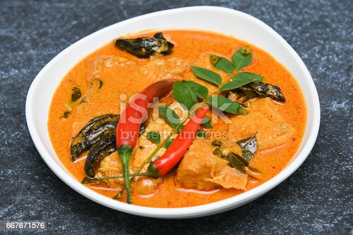istock Top view of spicy and hot king fish curry Kerala Indian food 667671576