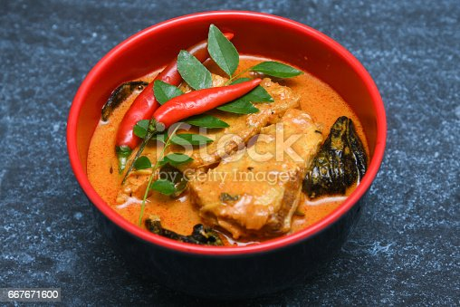 istock Top view of spicy and hot king fish curry Kerala Indian food 667671600