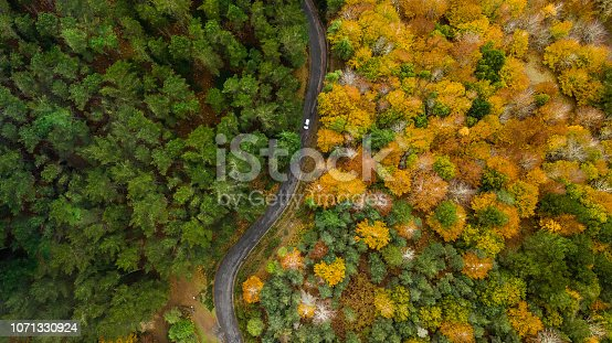 1061550162 istock photo Top view of turn road bend in autumn pine forest. 1071330924